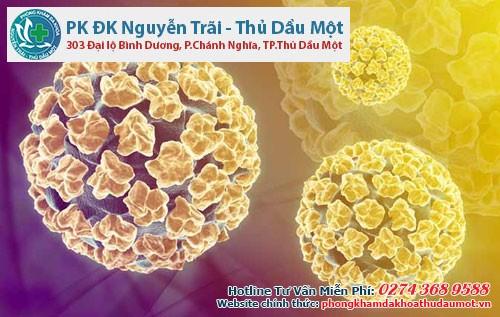Virus HPV gồm nhiều tuýp virus gây bệnh khác nhau