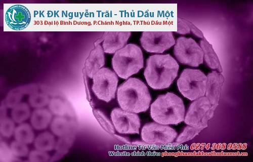 Human papilloma virus gây ra sùi mào gà